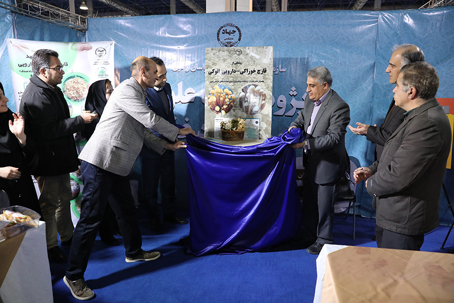 The Unveiling of fresh enoki mushrooms in The nineteenth exhibition of research and technology